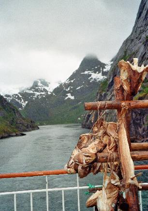 H Norway Stockfish in the Fjord.jpg
